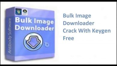 Bulk Image Downloader 5.86.0.0 With Crack
